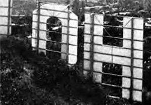عکس H نماد HOLLYWOOD که پگ انتویستیل خود را از آن پرت کرد - خودکشی بازیگران