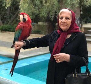 مادر متین ستوده و یک طوطی روی دستش